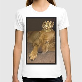 """""""PRINCE * PLaY-DoH"""" from the photo series""""My dog, PLaY-DoH"""" T-shirt"""