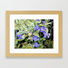 Blue flowers on black Framed Art Print