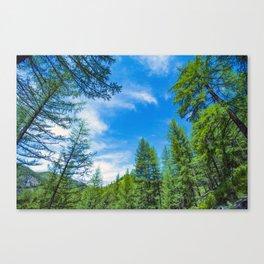 Siberian mountain taiga, mountains in the clouds, Altai Canvas Print