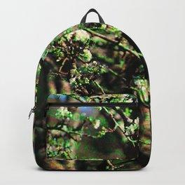Destroy Backpack
