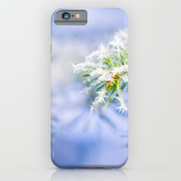 Bitter Cold, Cute Fir Tree iPhone Case