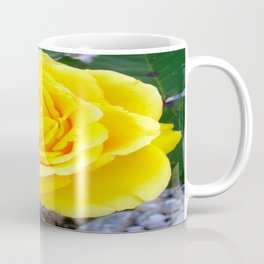 Golden Yellow Rose with Garden Background Coffee Mug