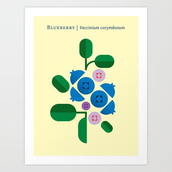 Fruit: Blueberry Art Print