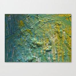 Water Scrape Canvas Print