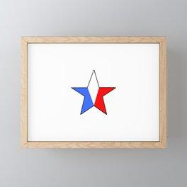 Flag of France 14- France, Français,française, French,romantic,love,gastronomy Framed Mini Art Print