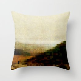 Before You Throw Pillow