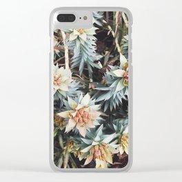 orange succulent Clear iPhone Case