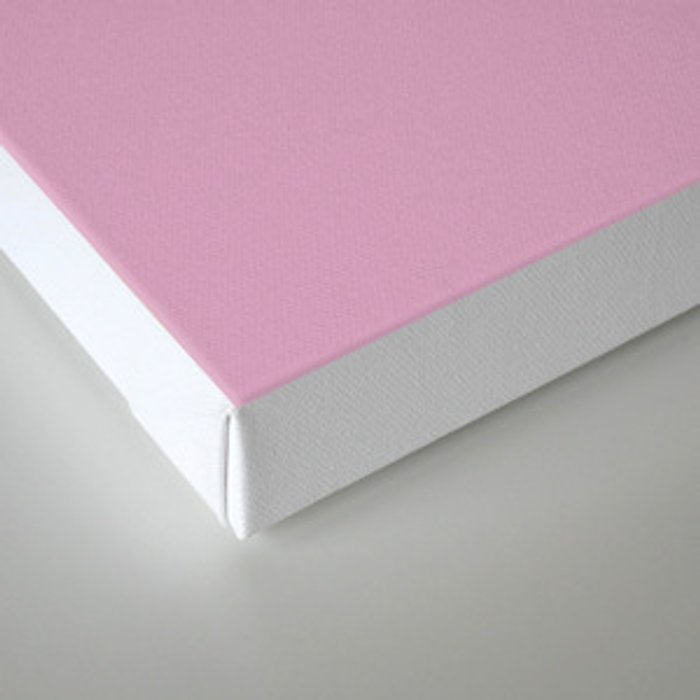 The future is female pink-white Canvas Print