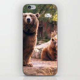 Spectecular Group Gracious Grizzly Bears Sitting In Habitat Waving At Camera Ultra HD iPhone Skin