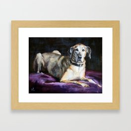 Duchess Framed Art Print