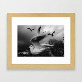 RiverGulls Framed Art Print