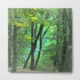 Wood Metal Print