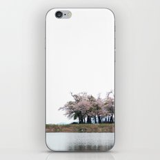 Spring Pond iPhone & iPod Skin