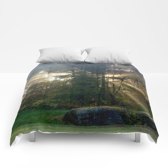 Sunlight Streams - Vermont Morning Glory Comforters