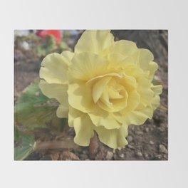 Yellow Rose Throw Blanket