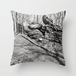 illinois landscape Throw Pillow