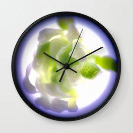 Arabidopsis Wall Clock