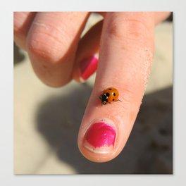Ladybug On A Lady's Finger Canvas Print