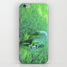 Monkey red nose, between green. iPhone & iPod Skin