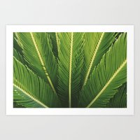 palm tree Art Prints featuring palm tree by Life Through the Lens