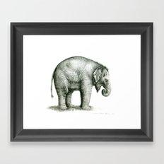 Baby Elephant (2) g008 Framed Art Print