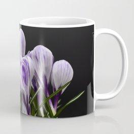 Spring Crocuses on a Black Background Coffee Mug