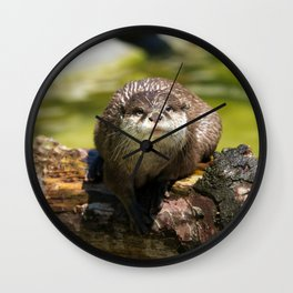 Otter on A Tree Trunk Wall Clock