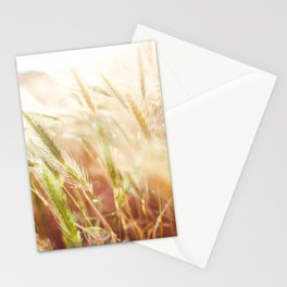 Wheat Close Up Stationery Cards