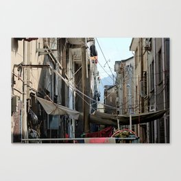 Chinese Cable Canvas Print