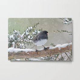 A Small Bird's Strength Metal Print