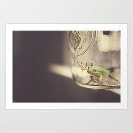 Frogs in a Jar 3 Art Print