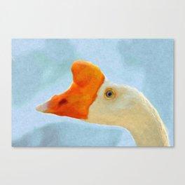 Blue eyed goose portrait Canvas Print