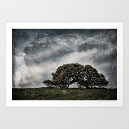 The Lone Oak Art Print