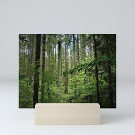 The Forest Mini Art Print