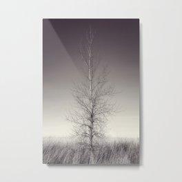 THE LAST TREE  (magenta) Metal Print