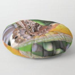 Morpho Butterfly Eating Lunch Floor Pillow