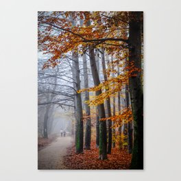 The last stroll in November Canvas Print