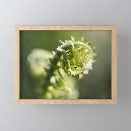 Fern 16 Framed Mini Art Print