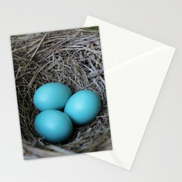New beginnings nesting Stationery Cards