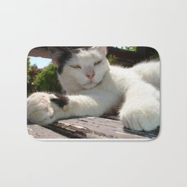 Black and White Bicolor Cat Lounging on A Park Bench Bath Mat