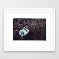 hibiscus Framed Art Prints featuring Hibiscus by KunstFabrik_StaticMovement Manu Jobst