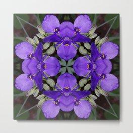Summer blue mandala - Spiderwort (Tradescantia) 9146 k14 Metal Print