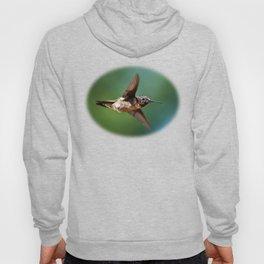 Hummingbird Swoop Hoody