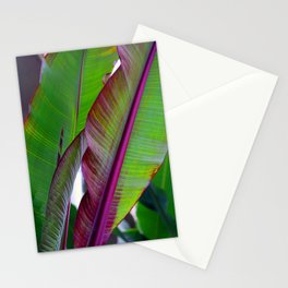 tropikew two Stationery Cards