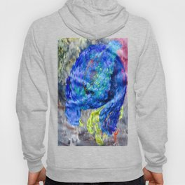 When You Just Need to Sleep Curl Up, Blue Phoenix Hoody