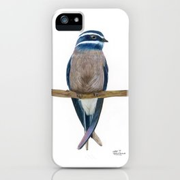 Whiskered Treeswift Watercolor iPhone Case