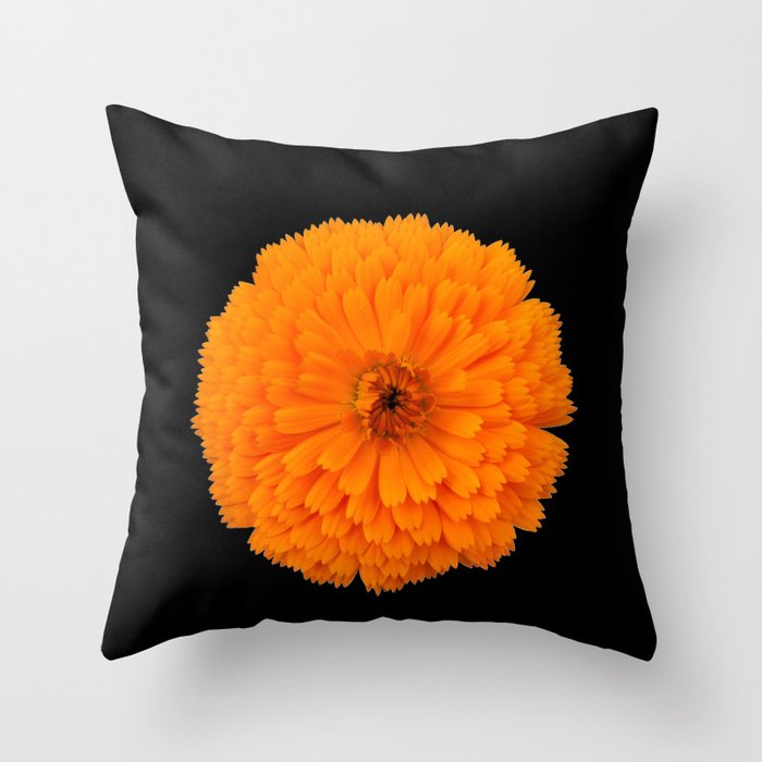 Marigold Flower On Black Background Throw Pillow By Spetenfia Society6