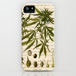 Marijuana Cannabis Botanical on Antique Journal Page iPhone Case