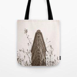 Flatiron In The Fall Tote Bag