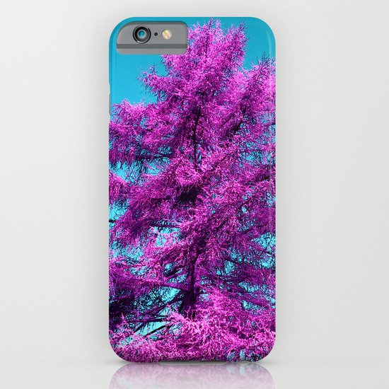 purple fir - tree I iPhone & iPod Case
